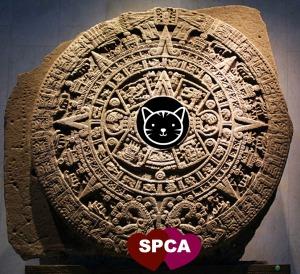 New-Mayan-Calendar