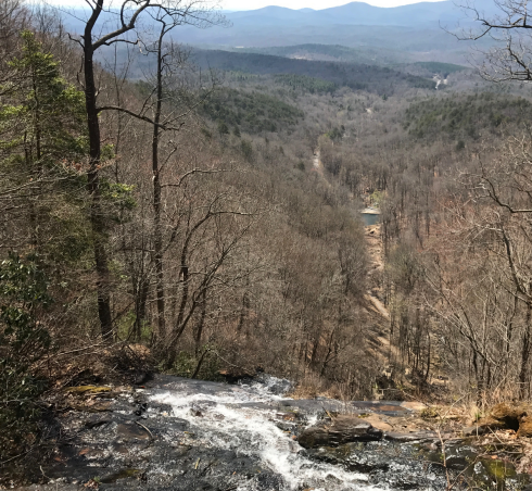 springer-mountain-approach-trail
